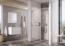 Душевая дверь Ravak Blix Slim BLSDP2-100 X0PMA0C00Z1 (1000х1950 мм) профиль блестящий/стекло Transparent